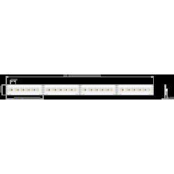 Taśma LED K-1530-RGB+W-24V 15.3W/m